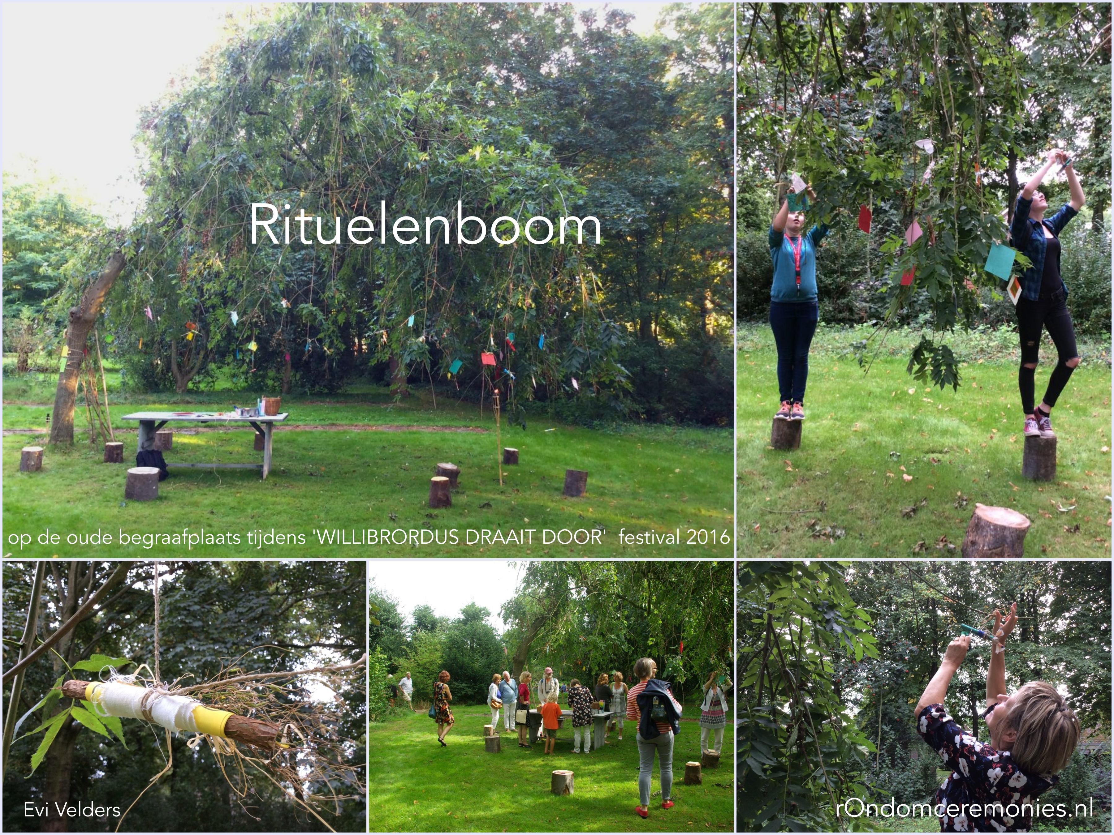 im-rituelenboom-wdd